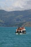 Tender boat, Akaroa Harbour Sth Island NZ