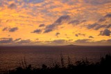 Hauraki Gulf, Whangaparaoa, NZ