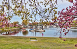 344, Harbor Island Park, Mamaroneck