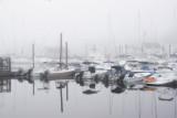 373, Mamaroneck Harbor