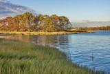 384, Marshlands Conservancy, Rye