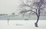 438, Winter at Harbor Island Park, Mamaroneck
