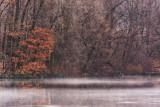 475, Larchmont Reservoir