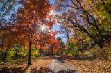 481, Bronx River Path, Bronxville