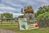 486, Farm, Bedford