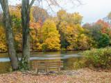 494, Larchmont Reservoir