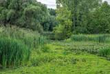 511, Beaver Swamp, Harrison
