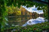 545, Larchmont Reservoir