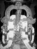 Chithirai Rohini - Kanchi Sri Ashtabujam Swamy Avathara Uthsavam (12/5/2013)