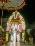 pei_aahzwar_7th_day_thirunakshatram_purappadu