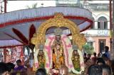 Kaisiga Dwadasi - Sri Parthasarathy Swamy vanabojana Uthsavam - Sthothrapada Goshti