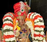 Sri Perarulalan vanabojana Uthsavam