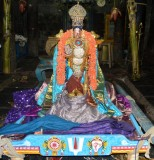 Sri Vijayaragavan Evening - Sri Vijayaragavan @ Yali VahanamThirukola Sevai - Brahmothsavam Day5 Evening