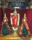 Thiruthther Prathishtai (Vijaya-Maasi)