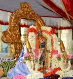 Sri Perarulalan Panguni Masa pournami (pancha Paruvam) Purappadu