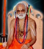 7.Sri Parakala Mutt Jeeyar Swamin.jpg