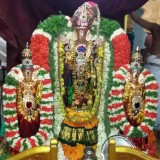 Panguni Utsavam Day 7  (Thiru Ther)