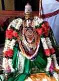 Kaatumannar Koil -Sriman Nathamunigal Tiruavatara Utsavam-Day 1