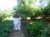 DSC01187 - Sri Ramanatha Baghavathar caretaker of Nandhavam.JPG