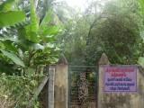 DSC00408-Nandavanam.JPG
