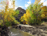 Escalante-Death Hollow: Our start in the autumnal cottonwoods of Escalante river