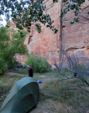 Oct 16 Utah Escalante-Death Hollow: Camp on the escalante river