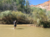 Silver Falls-Choprock Loop: Muddy Harris Wash flows into the Escalante River