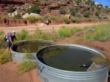 Silver Falls-Choprock Loop: Two good water tanks on Moody dirt road opposite Colt Mesa