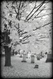 IR Graveyard