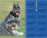Carlin Calendar