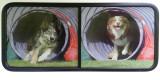 Chittenden RV side screens