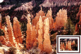 Bryce Canyon PIC_0265