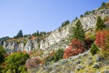 Logan Canyon 2014