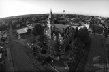 Albany Courthouse Square in Fall in B&W