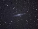 NGC-891