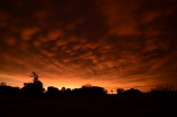 Morning Mammatus Display