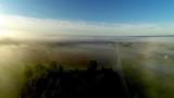Thompson Branch Fog