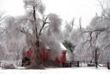 Ice Storm & Barn (Impression)