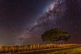 Maleny Milky Way