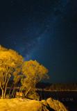 Queenstown Milky Way
