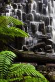 Dip Falls, Tasmania