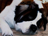 Lazy Dogs Watercolor Paintings by Pam Houle