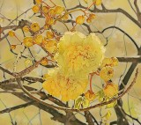 San Juan Flowers by Tana