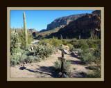 First Water Trailhead to Canyon Cove Trail