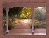 029 14 12 8 Boyce Thompson Arboretum