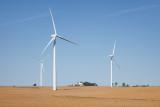 Bean Field Turbines
