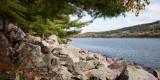 West Shore Pines
