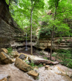 Spring Growth at St Louis Canyon