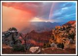 Wild Canyon Light