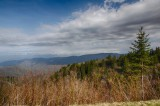 Great Smoky Mountains National Park, 2014